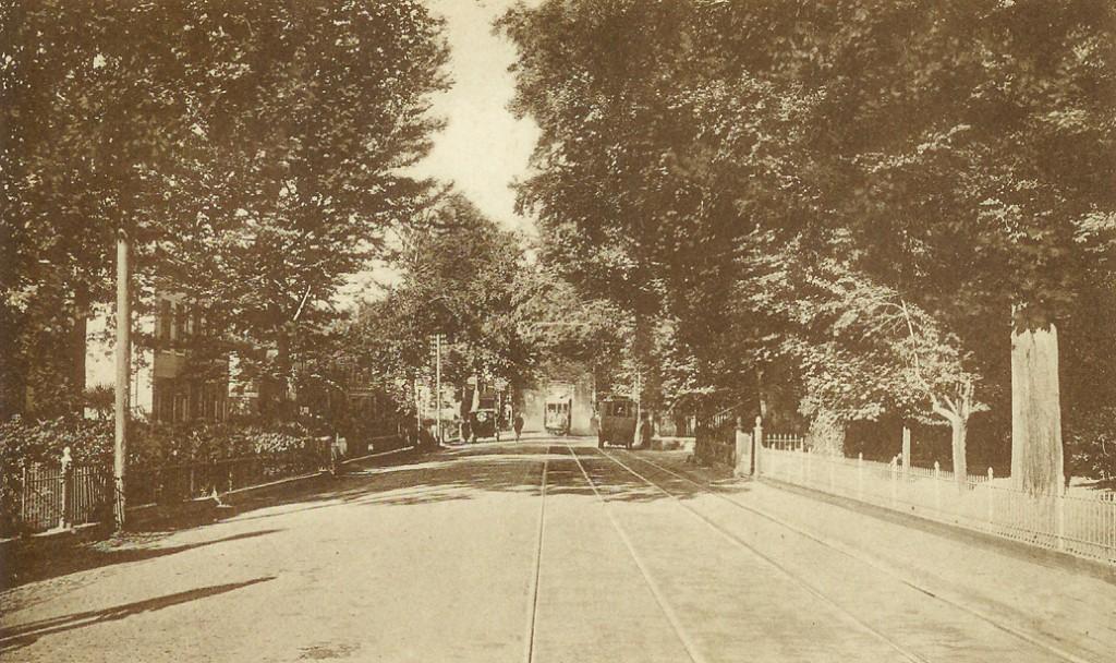 het punt rond de huidige Pastoor Bruggemanlaan in 1928. Rechts de zuilen van de oprijlaan van de Dennenkamp. Links Villa Maria met westelijk daarvan Alida 's Hof.