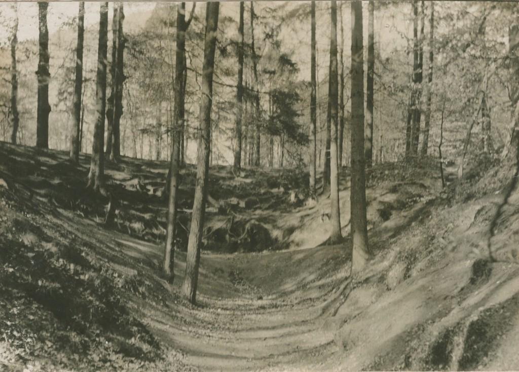 """""""De Hel"""" een noordelijk van één van de sprengkoppen van de Gielenbeek, nabij de eendjesvijver."""