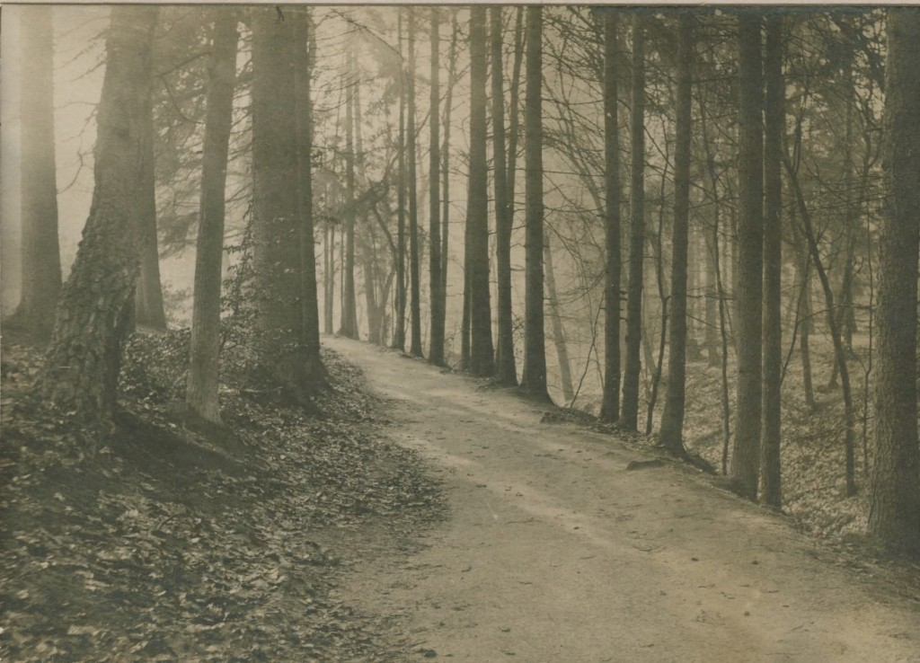 """Het pad aan de oostkant van """"De Hel""""."""