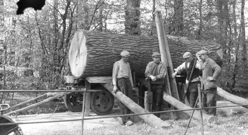 Het laden van een massief stuk eikenhout.