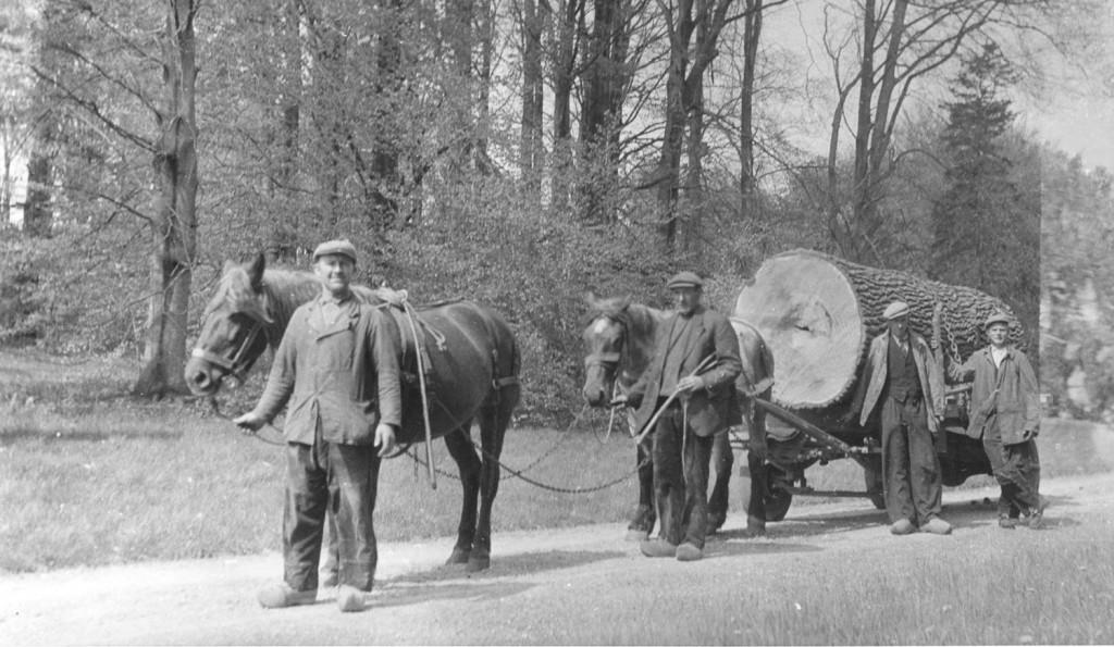 Afvoer met paard en wagen. In het koetshuis van de Hemelse Berg werden geen eigen paarden meer gestald. voor dit werk huurde men materiaal in.