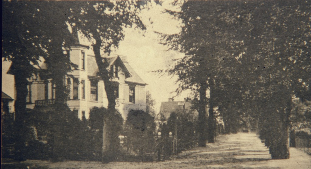 """De Beukenlaan doet haar naam eer aan. Links de villa """"Rosande"""" in een omgeving zoals Escher die gekend moet hebben."""