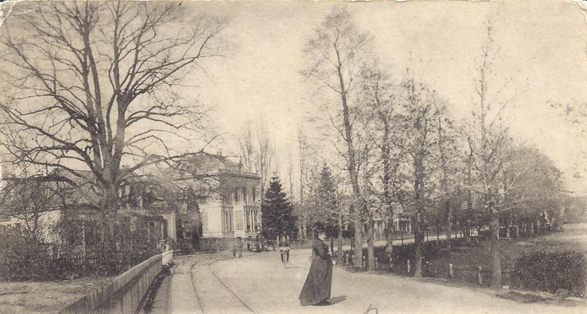 """De Dorpsstraat, gezien in oostelijke richting. Rechts achter de bomenrij ligt de Kloosterweide. Links, naast """"de Blauwe Spar"""", nummer 173 de woning van De Haas."""