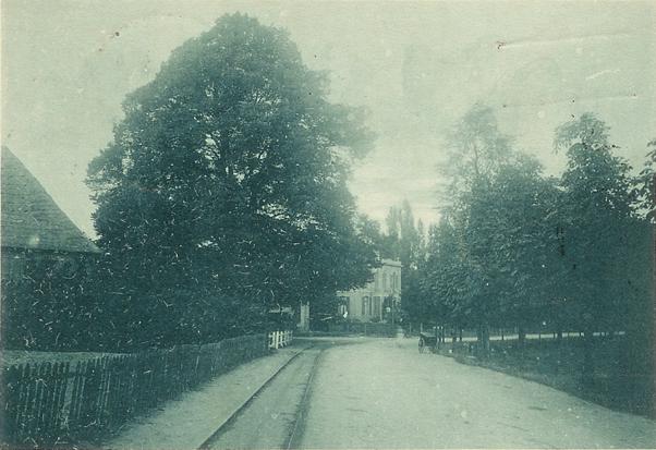 """Links de """"Oude Kosterie"""" met de majestueuze lindeboom.Op de achtergrond """"de Bl;auwe Spar""""."""